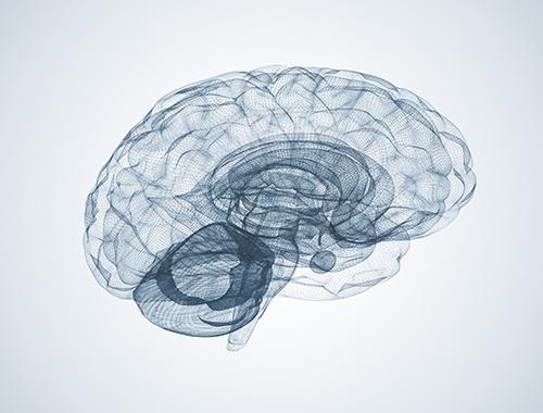 digital brain image concept